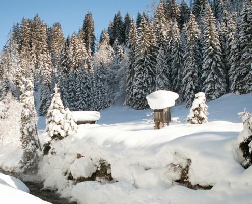 Winterparadies Leogang